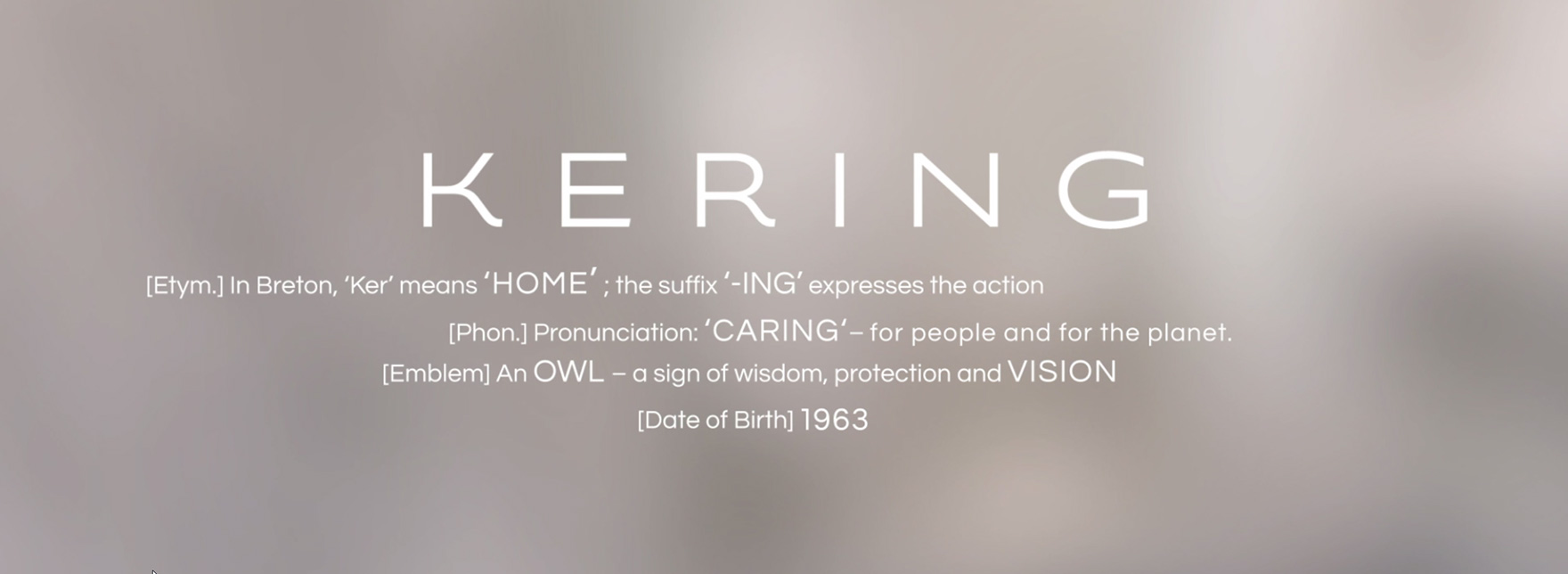 Kering at a glance